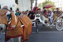 Indian horse & carriage