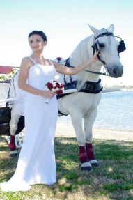 wedding-horse-carriage2